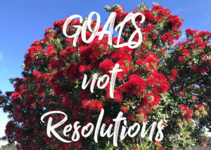 Set yourself some New Year's goals, not resolutions, Bariatric Gold, Melissa, Melissa Peaks, Coach, Bariatric Coach